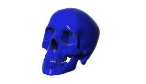 Renderbild eines blauen Schädels